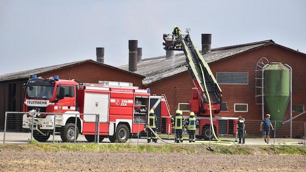 Feuer bricht in Stall eines landwirtschaftlichen Betriebes aus