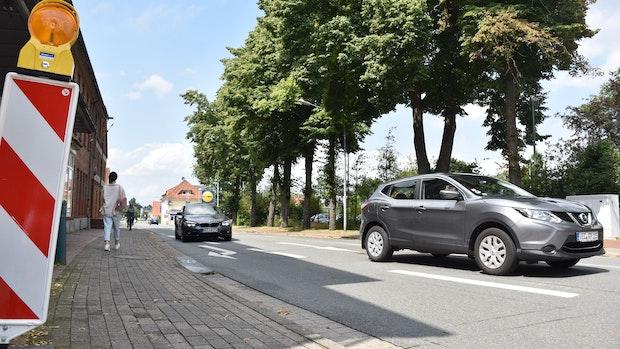 Lohne will die Keetstraße ausbauen – 8 große Linden sollen dafür fallen
