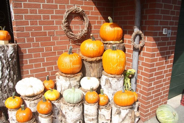 Kürbisvielfalt: Auf dem Hof sieht man in jeder Ecke geschnitzte und verzierte Kürbisse. Foto: Technow