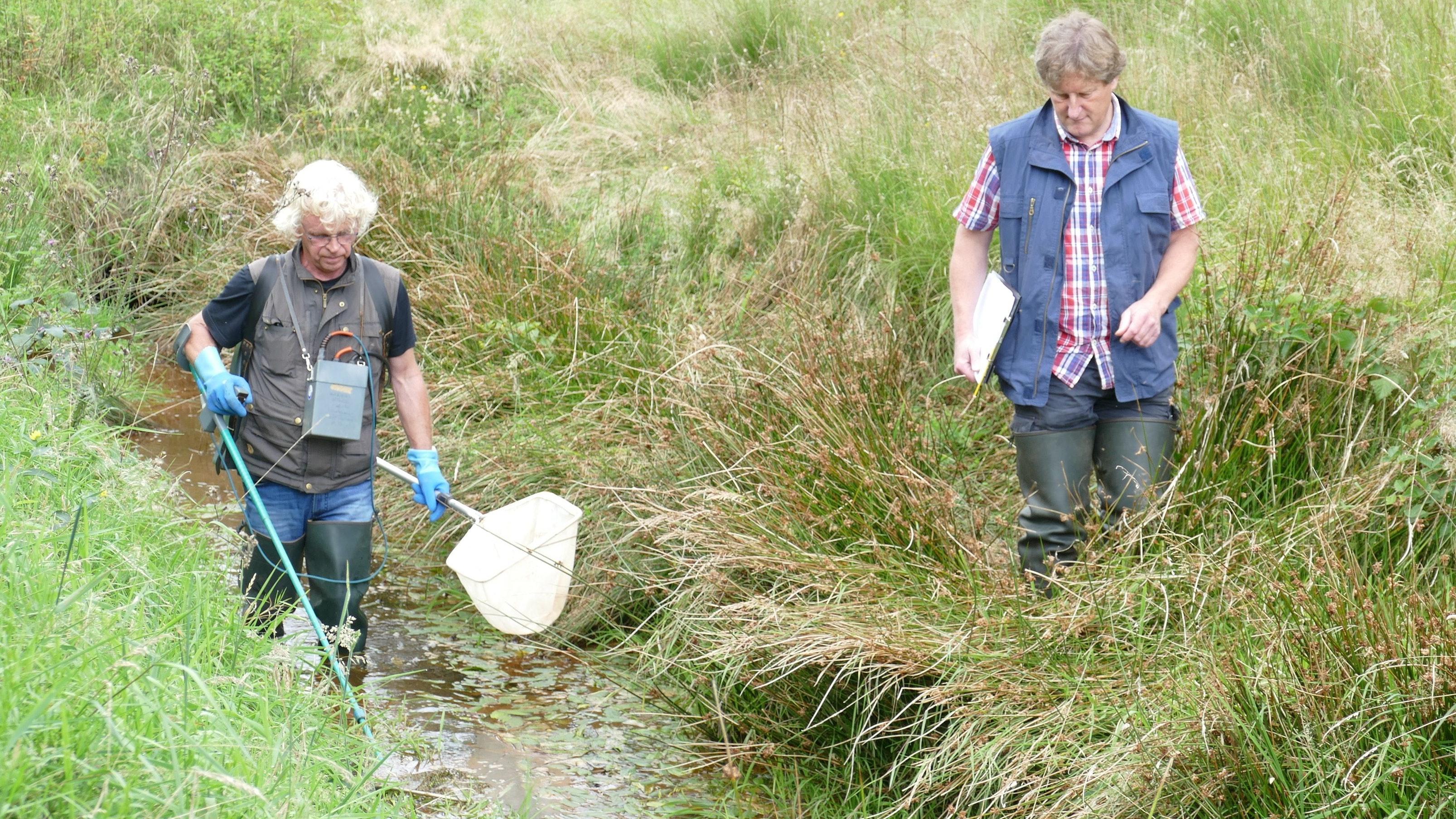 Auf Fischfang: Wolfgang Rötker (links) und Mathias Wennemann untersuchen Wasserqualität, Flora und Fauna des Grabens am Direktor-Sperl-Weg. Hier will die Wasseracht ein kleines variables Sperrwerk einrichten. Foto: Stix