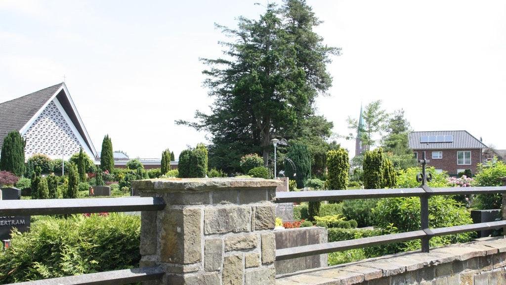 Der Friedhof ist viel mehr als ein Ort der Trauer. Das will die katholische Kirchengemeinde St. Catharina am 18. September zeigen. Foto: Siemer