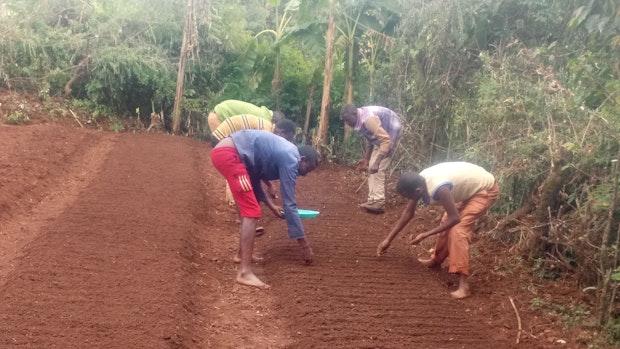 """Nachhaltige Landwirtschaft: So hilft """"SgH"""" im Projektgebiet Dano"""