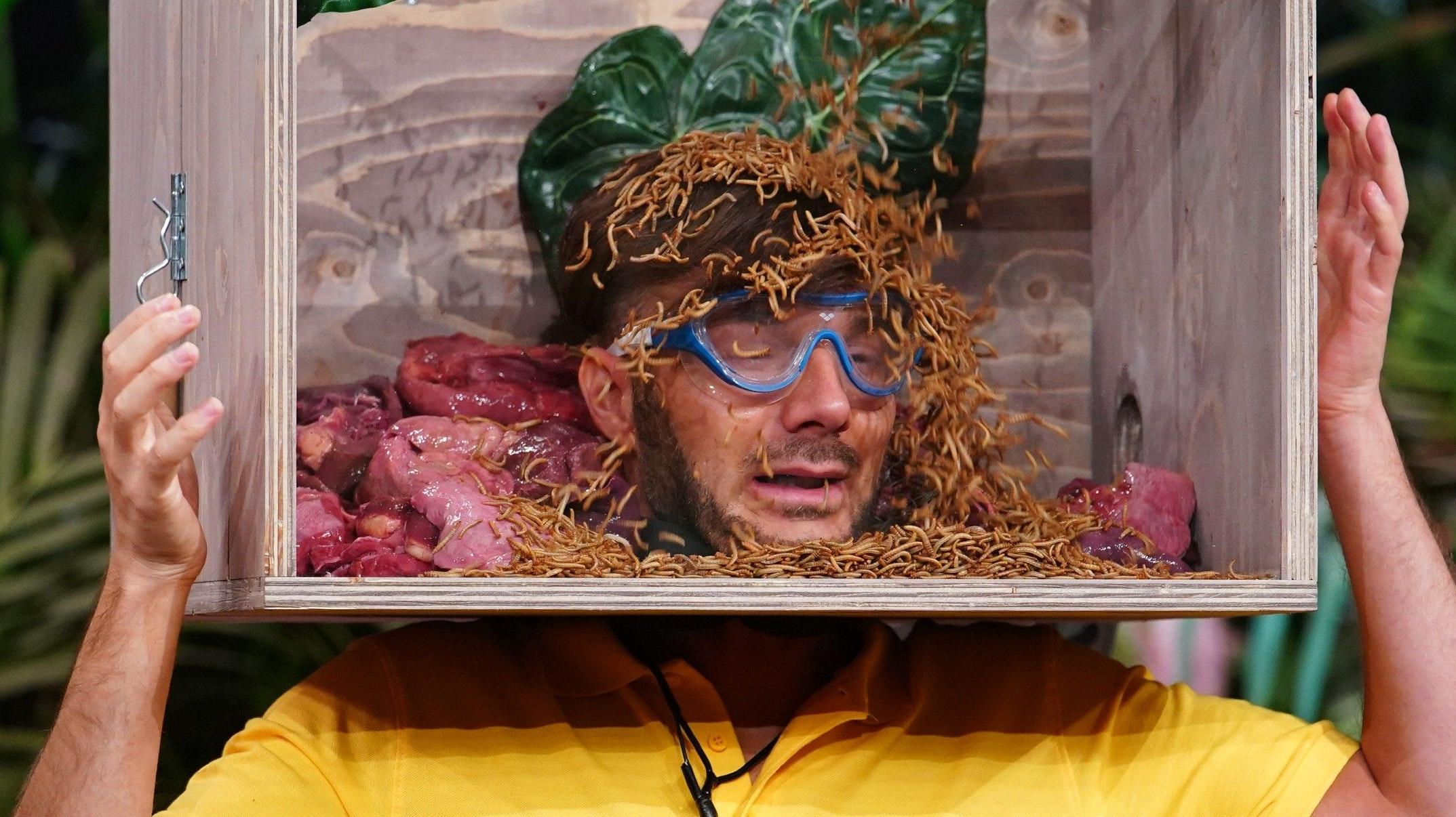 """Er will in den Dschungel, er bekam ihn: In der """"Corona-Version"""" der Show hat sich an den unappetitlichen Prüfungen nichts geändert. Foto: <a target=""""_blank"""" href=""""http://www.tvnow.de"""">TVNOW</a> / Stefan Gregorowius"""
