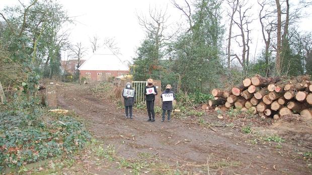 """Bürgerinitiative """"Pro Wald"""" sammelt 1554 Unterschriften"""