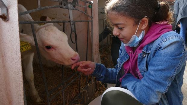 Berufsvorbereitung auf dem Bauernhof