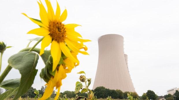 Niedersachsens vorletztes aktives Atomkraftwerk soll Ende des Jahres vom Netz gehen