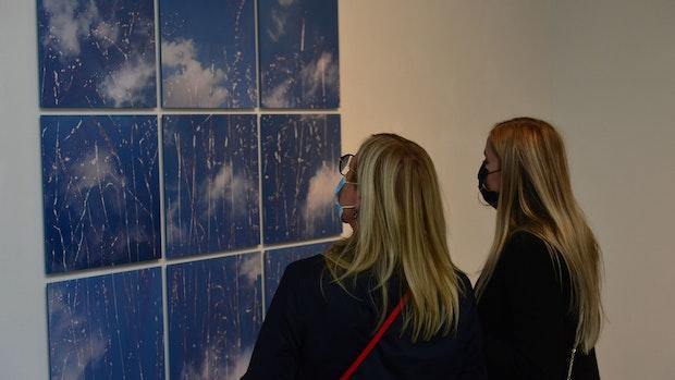 Neue Ausstellung in Cloppenburg zeigt künstlerische Schönheit der Natur