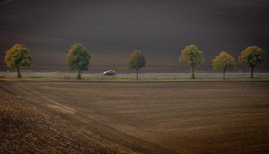 Der Tag beginnt herbstlich grau. Foto: dpaFrankenberg