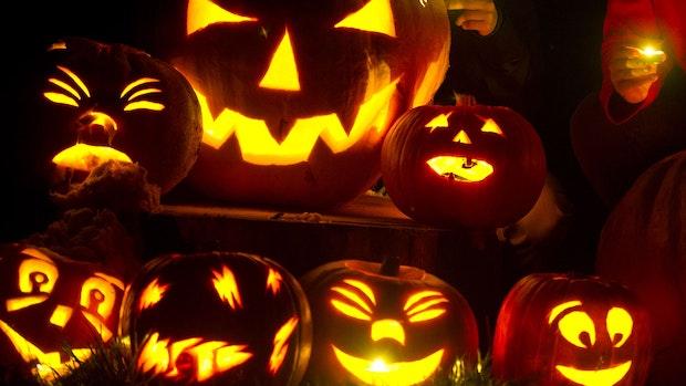 So wird aus dem Kürbis die schaurig-schöne Halloween-Deko