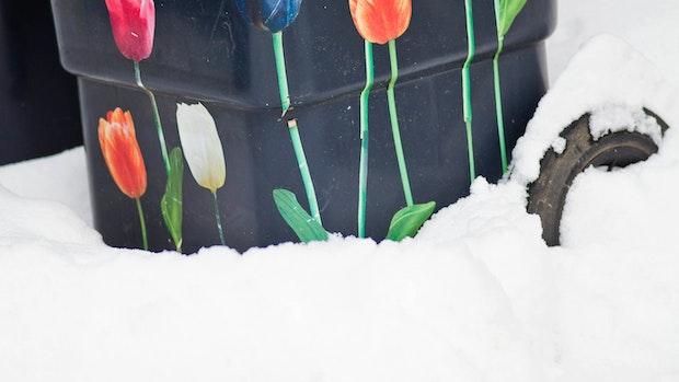 Winter bringt Probleme bei der Müllabfuhr