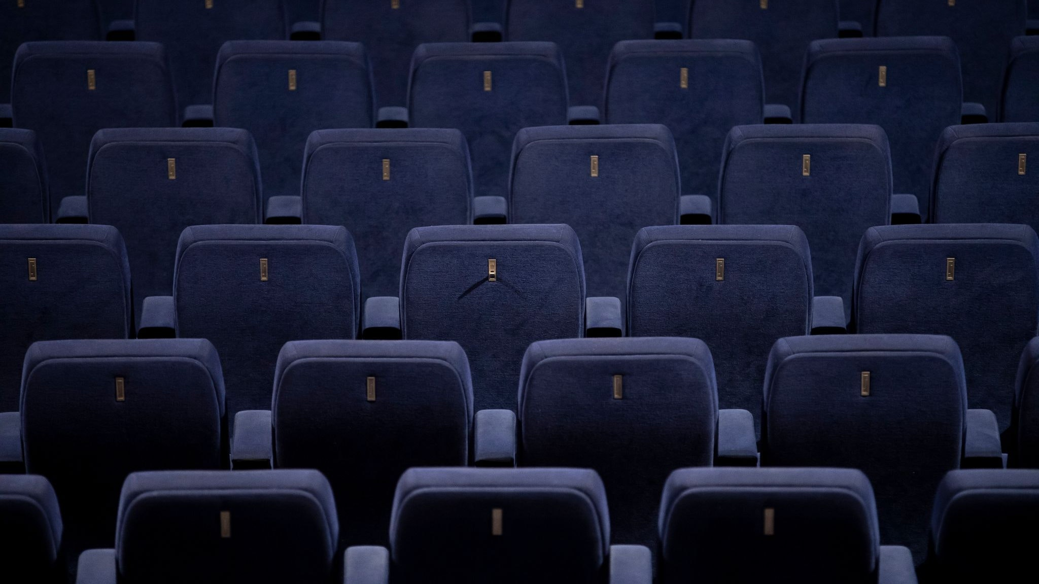 Leere Sessel sind in einem Kinosaal zu sehen.Christoph Soeder/dpa/Symbolbild