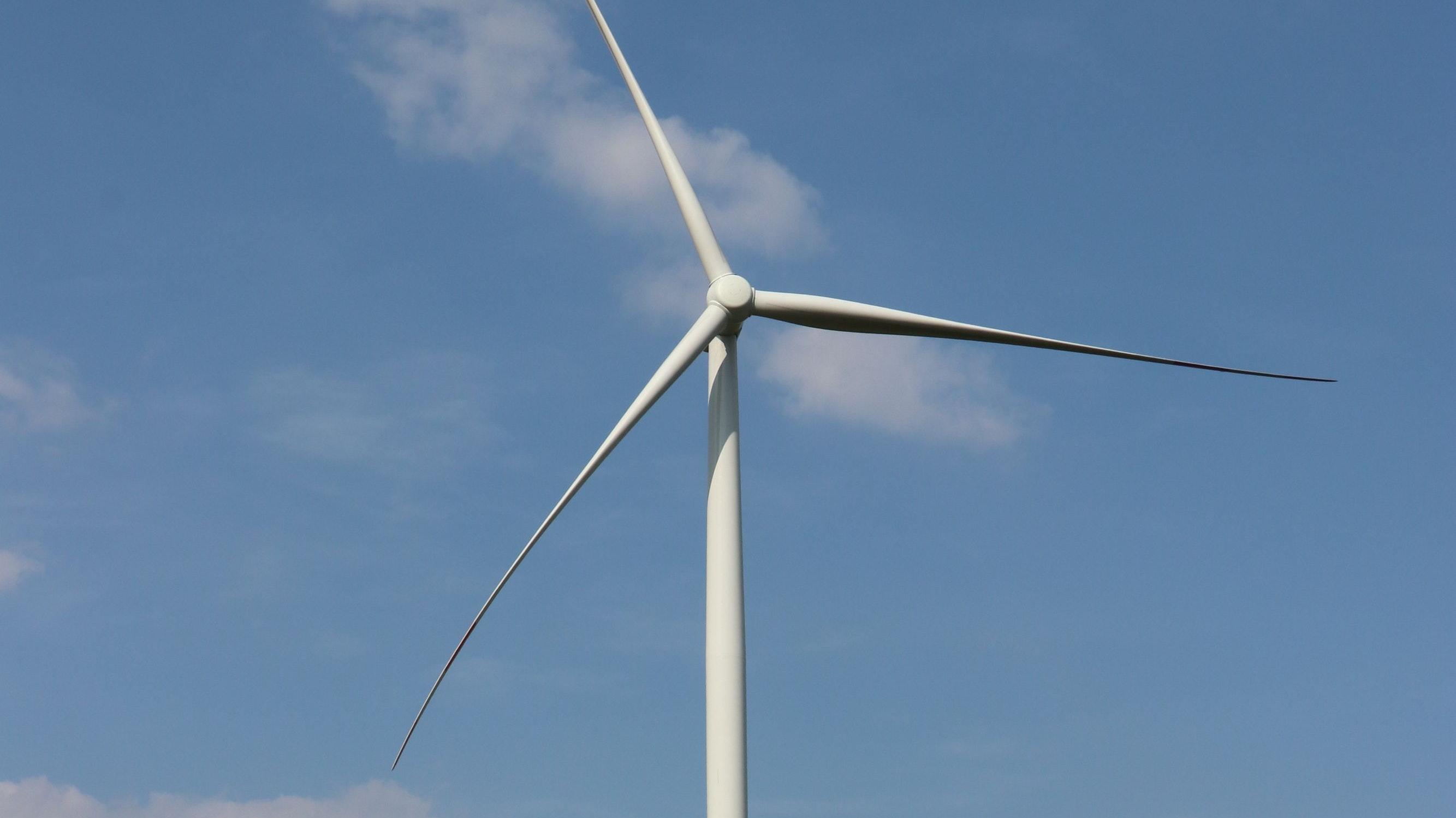 Hilfe durch die Windpark-Stiftung: Dammer Vereine profitieren von zur Verfügung gestellten Sondermitteln. Foto: Lammert