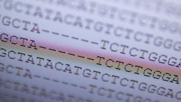 Garreler Schlachtbetrieb: 17 Fälle von Corona-Mutation nachgewiesen