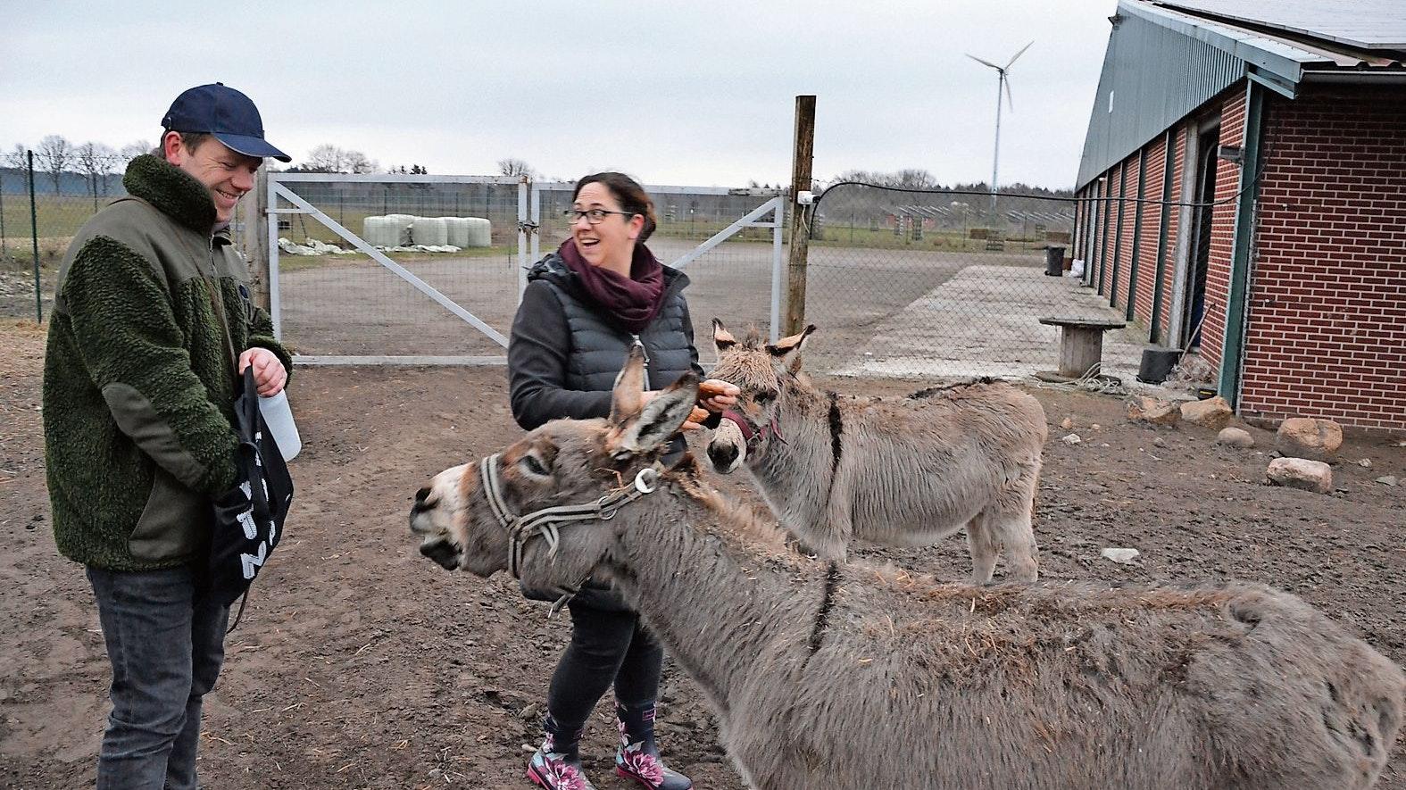 Selbstbewusst: Auf ihre Esel können sich Sandra und Wilhelm Büter verlassen. Die Tiere sind zutraulich - und wehrhaft. Foto: Meyer