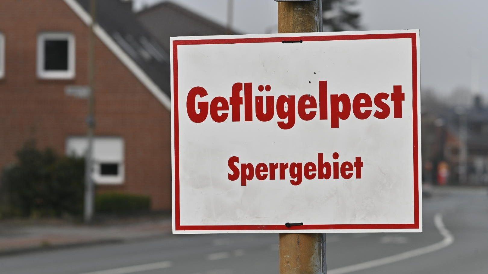 Neue Anordnungen: Mehrere Sperr- und Beobachtungsgebiete gibt jetzt jetzt im Landkreis Vechta. Foto: M. Niehues