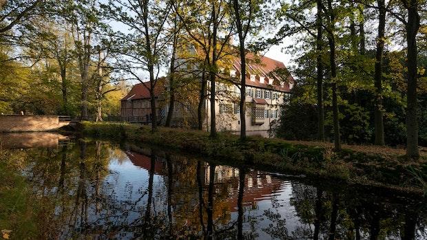 Die Reaktionen auf das Gutachten zum Burgwald – ein Überblick