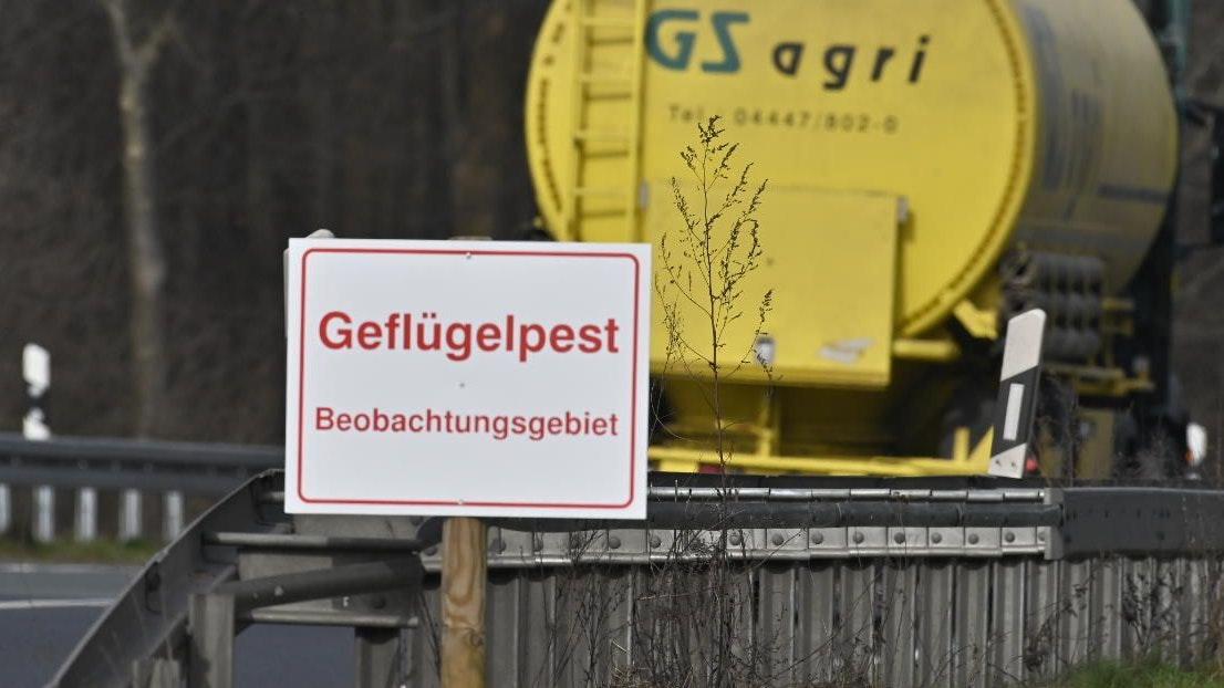Wegen der aktuellen Fälle in Lohne müssen auch die Beobachtungsgebiete im Landkreis Diepholz neu gezogen werden. Foto: M. Niehues