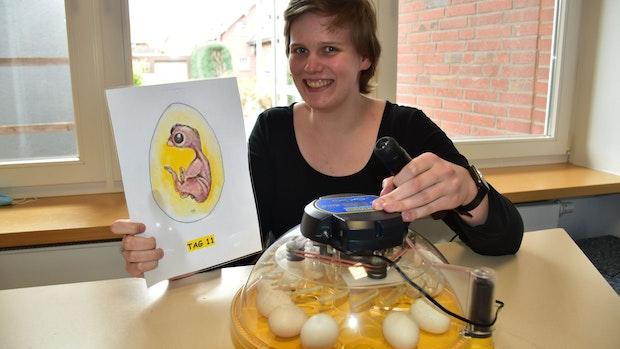 Kinder freuen sich schon: Wenn Küken in der Kita aus dem Ei schlüpfen