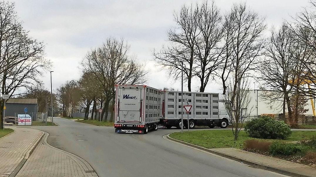 Für die SPD ein Gefahrenpunkt: Die Querung der Straßen Holthöge und Holthoke über die Löninger Straße sollte nach Meinung der Essener Sozialdemokraten entschärft werden. Foto: Kolde