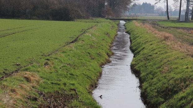 Hörster Schulweg erhitzt in Neuenkirchen-Vördens Politik die Gemüter