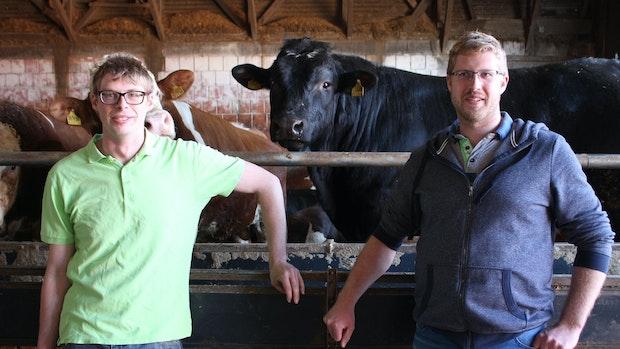 Christian und Alexander Rolfes sind mit ihrem Bakumer Rindfleisch erfolgreich