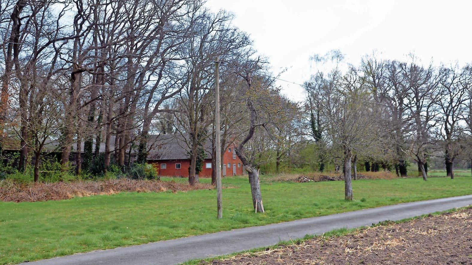 Vom Tisch: Im sogenannten Apfelgarten in Böen wird kein Gesundheitshaus entstehen. Foto: Siemer