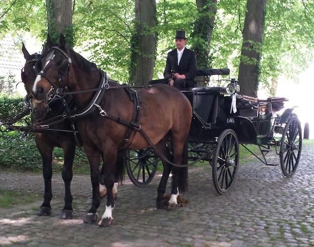 Gerade in den Sommermonaten haben die Kutscher des Vereins normalerweise gut zu tun. Sie sind auf Schützenfesten oder für Hochzeiten unterwegs, Foto: Hölter