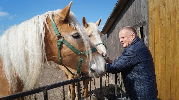 Ponyclub Ellenstedt kämpft mit finanziellen Problemen