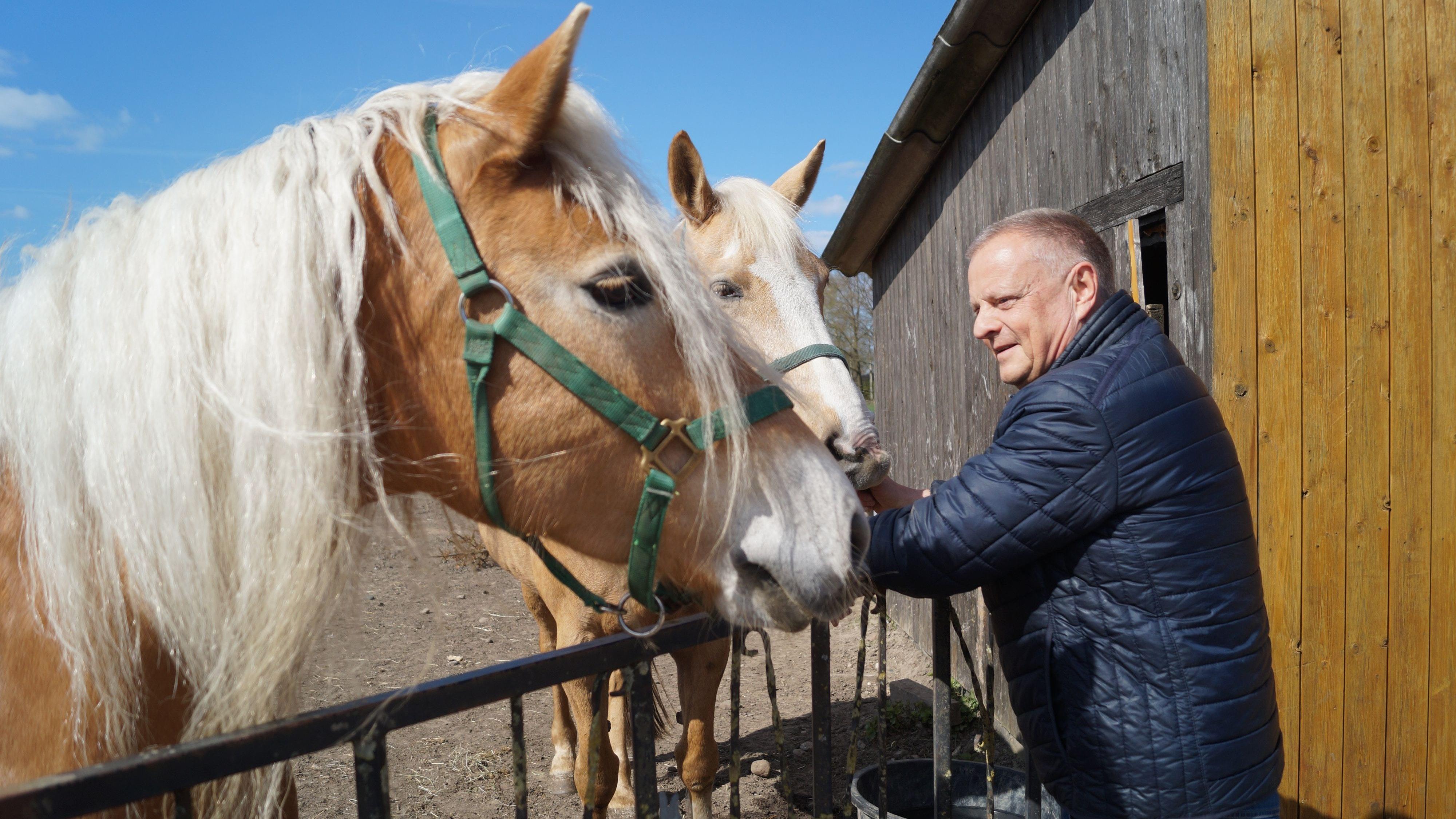 Gibt es etwas zu fressen? Die Ponys sind neugierig, ob Uwe Prinz, Vorsitzender des Ponyclubs Ellenstedt, ihnen etwas Leckeres mitgebracht hat. Foto: C. Meyer