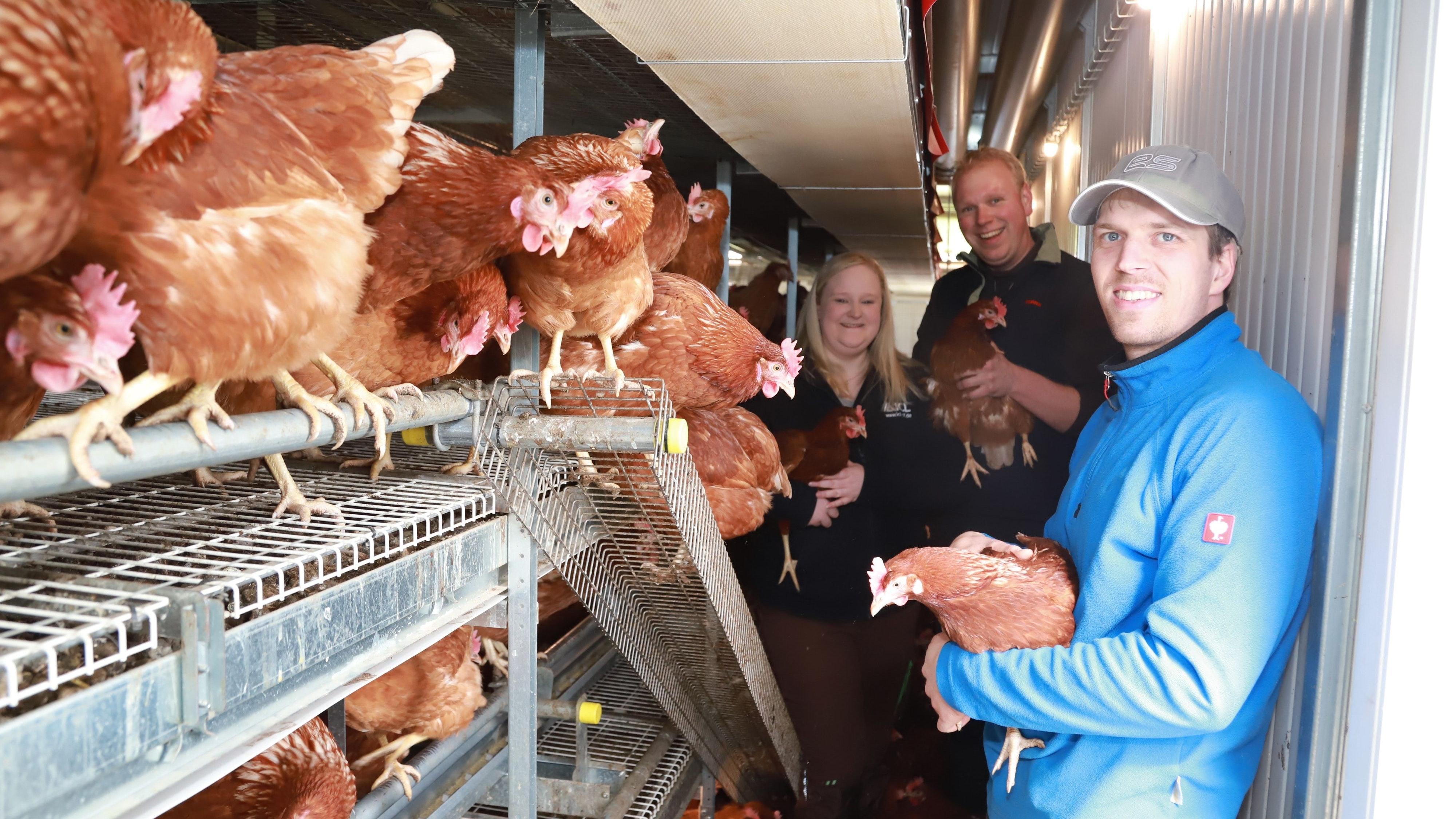 """Tierisch was los: Verena und Markus von Höfen sowie Schwager Jesko Künne (rechts) sorgen für """"glückliche Hühner"""". 450 Tiere leben im vollautomatisierten mobilen Stall. Foto: C. Passmann"""
