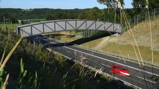 Fledermausbrücke zwischen Emstek und Cappeln geplant