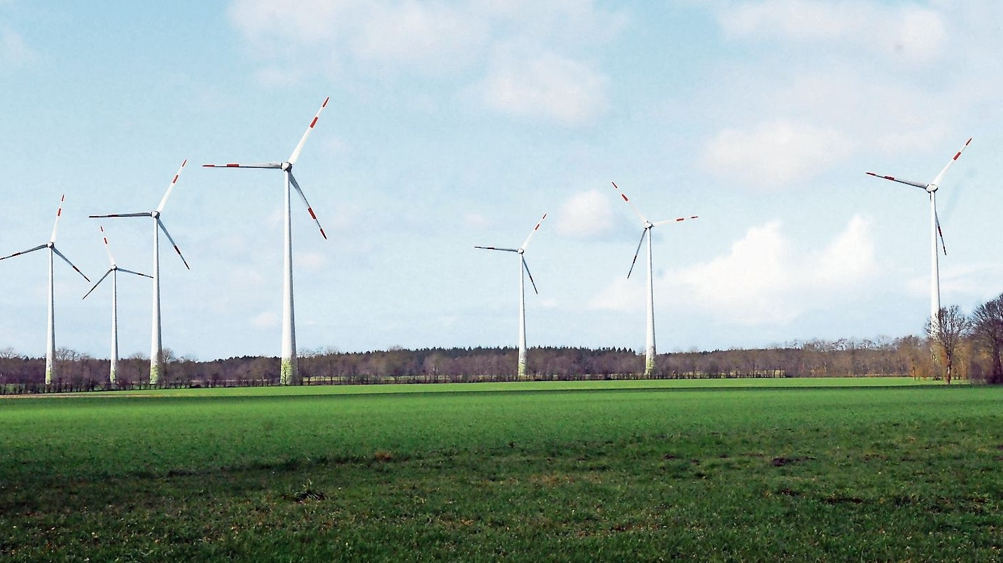Könnte bald Gesellschaft erhalten: Nördlich des auf Löninger Gebiet liegenden Windparks Wachtum auf der anderen Seite von Schuten Busch zwischen Marren und Klöbbergen haben die Experten des Planungsbüros eine 33 Hektar große Fläche ausgemacht, auf der der einzige Windpark in Lindern möglich wäre. Foto: Willi Siemer