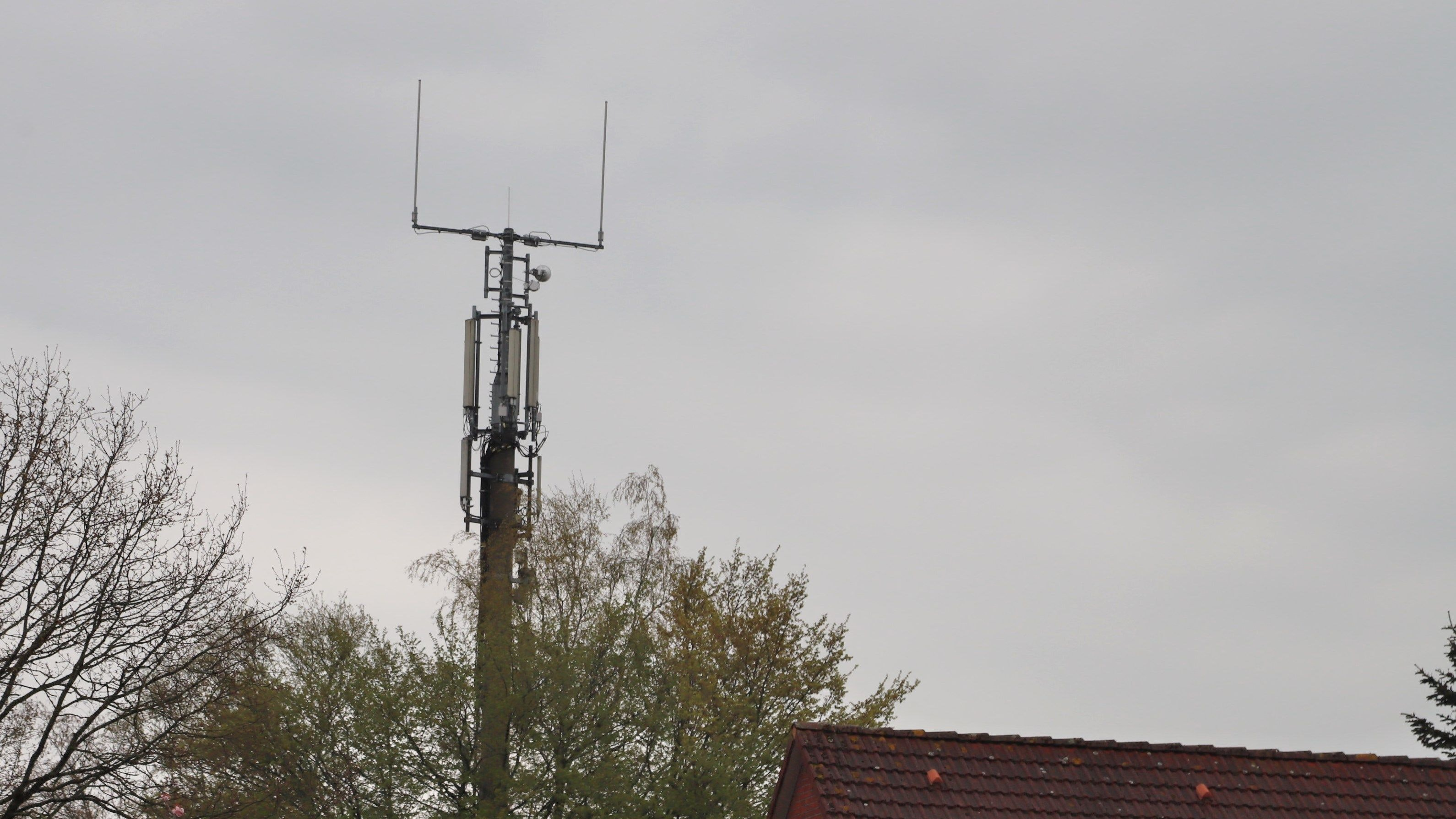 Schnelles Internet: Durch die Aufstellung von Richtfunkmasten treibt Barßel den digitalen Ausbau voran. Foto: Passmann