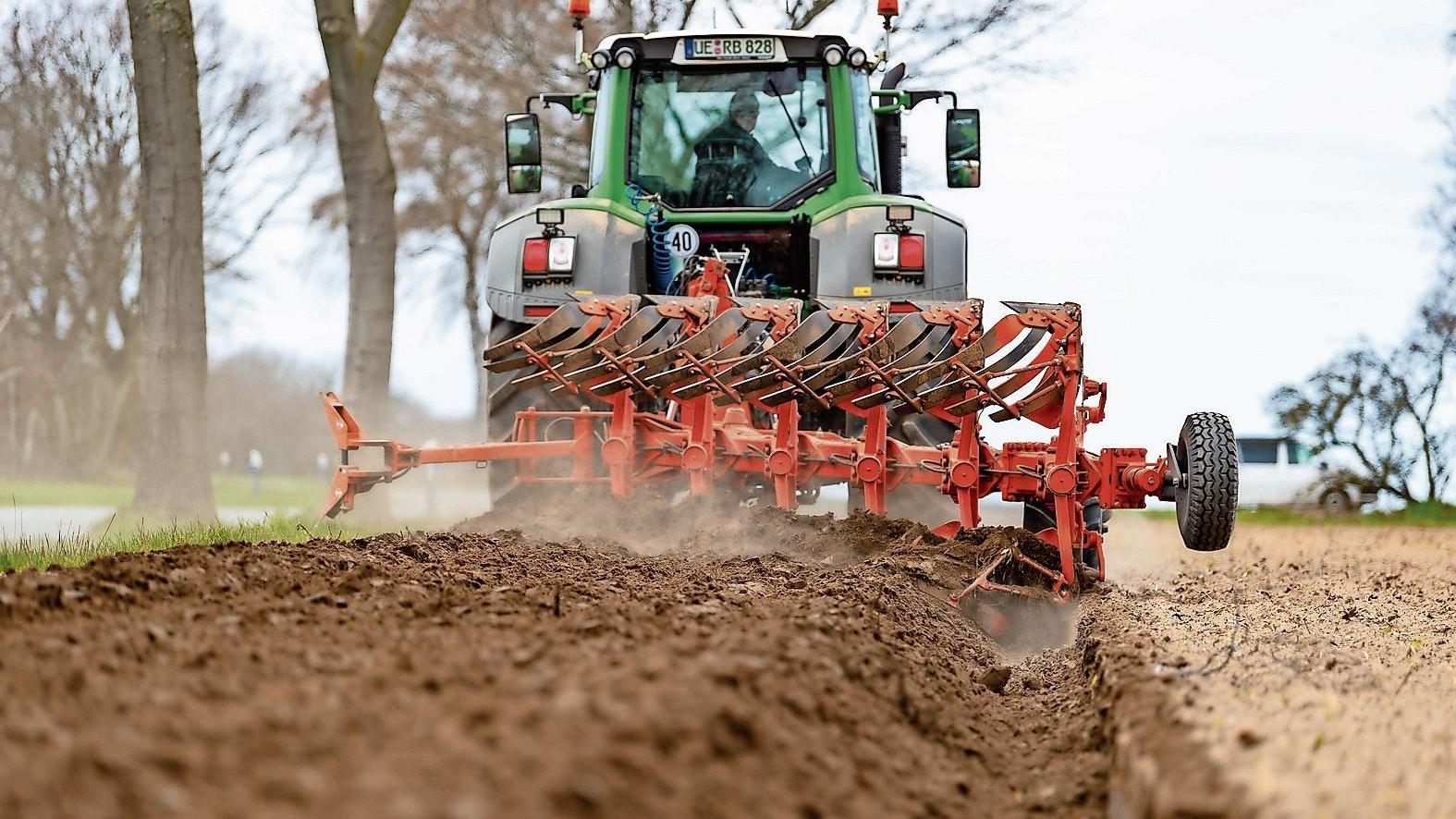 Wird wichtiger: Der Ackerbau trägt künftig stärker zum Einkommen bei, glauben Fachleute der Landwirtschaftskammer. Foto: dpa