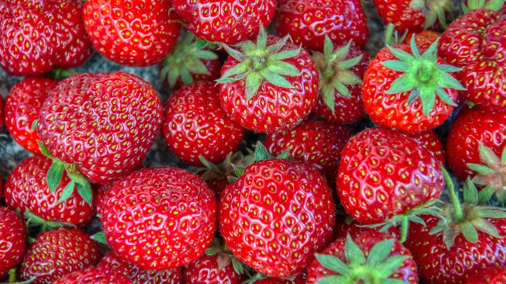 In Hofläden und an Marktständen hat die Zeit der heimischen Erdbeeren begonnen: Immer öfter stehen in diesen Tagen die roten, saftigen Früchte aus niedersächsischer Produktion zum Verkauf. Foto: Lässer/Pixabay