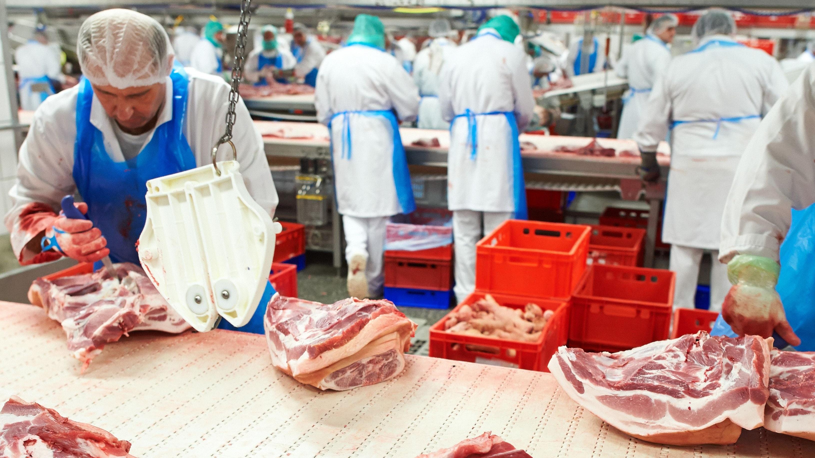 Arbeiter in der Fleischindustrie sollen mehr Geld bekommen. Foto: dpa/Thissen