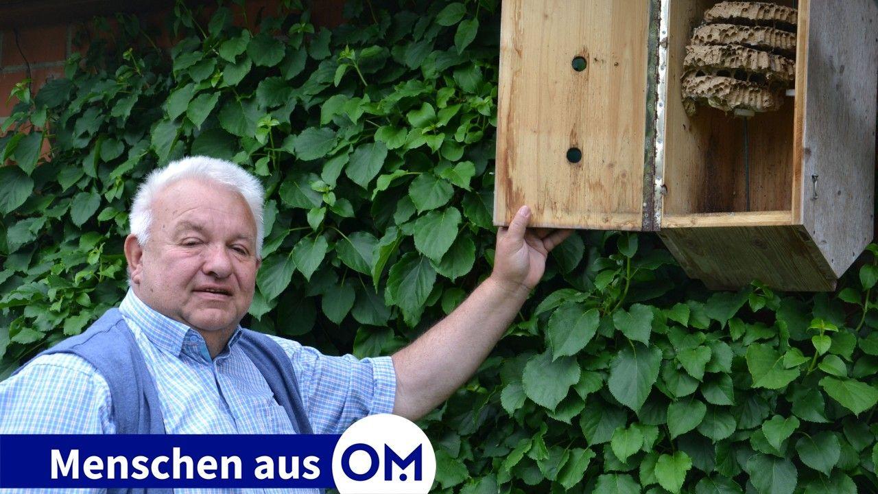 Neue Heimat: In Kästen wie diesen siedelt Werner Fendesack die Hornissen nach einem Umzug wieder an. Foto: Götting