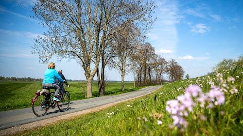 Es bewegt sich was: Viele neue Pendler-Radwege bahnen sich im Kreis Vechta an