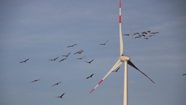 Bürger können sich zu Windkraftplänen in der Stadt Vechta äußern