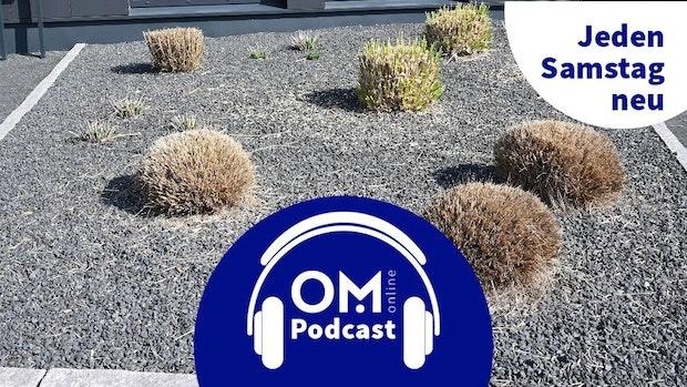 9. Episode des OM online Podcasts: Die Gärten des Grauens