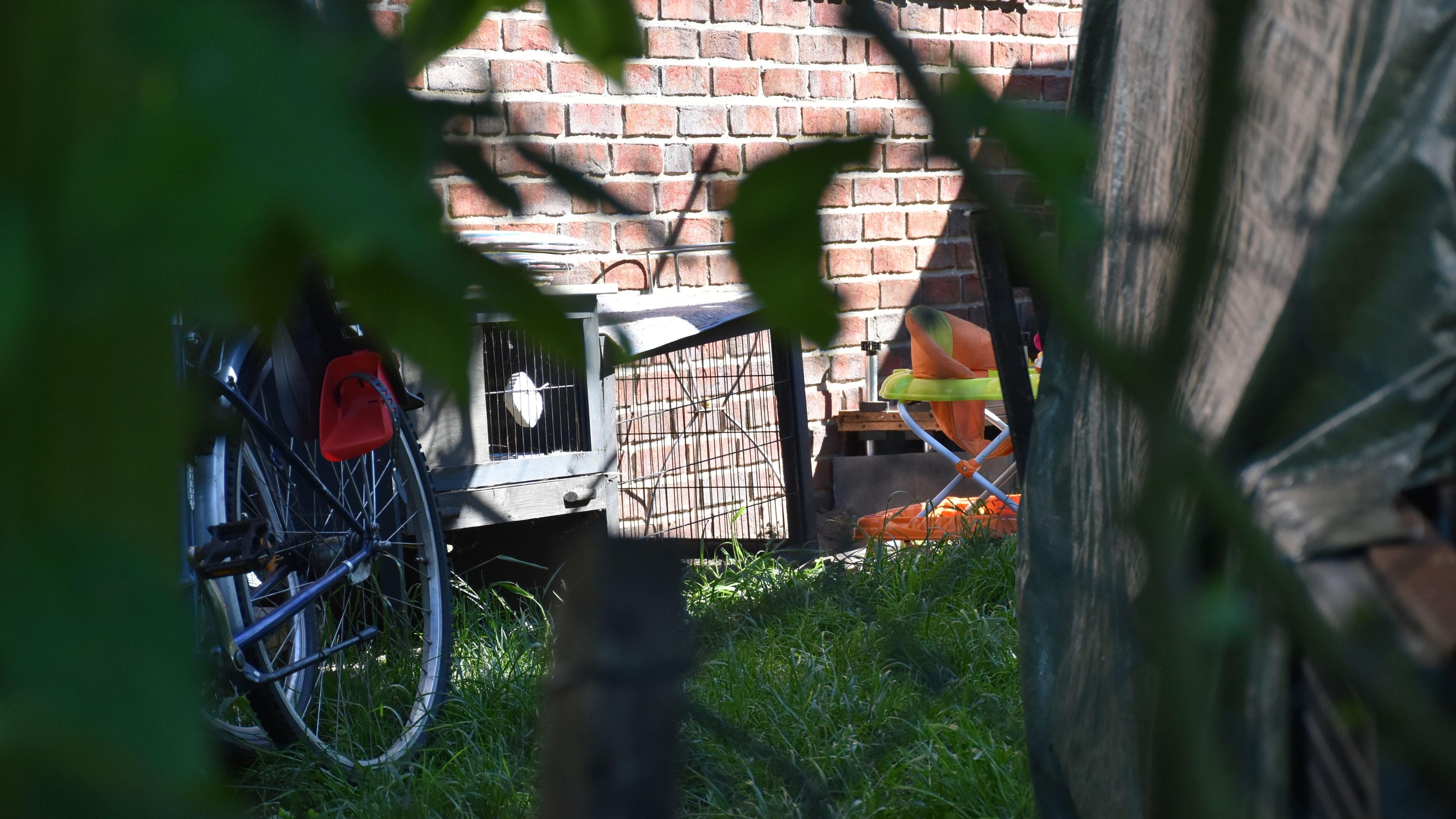 Die Ställe sind zu sehen, die Tiere nicht: Seit Monaten ärgert sich Reinhard Stuntebeck aus Steinfeld über die Kleintierhaltungen seines Nachbarn. Auch über Lärm und Unrat klagt er. Foto: Timphaus