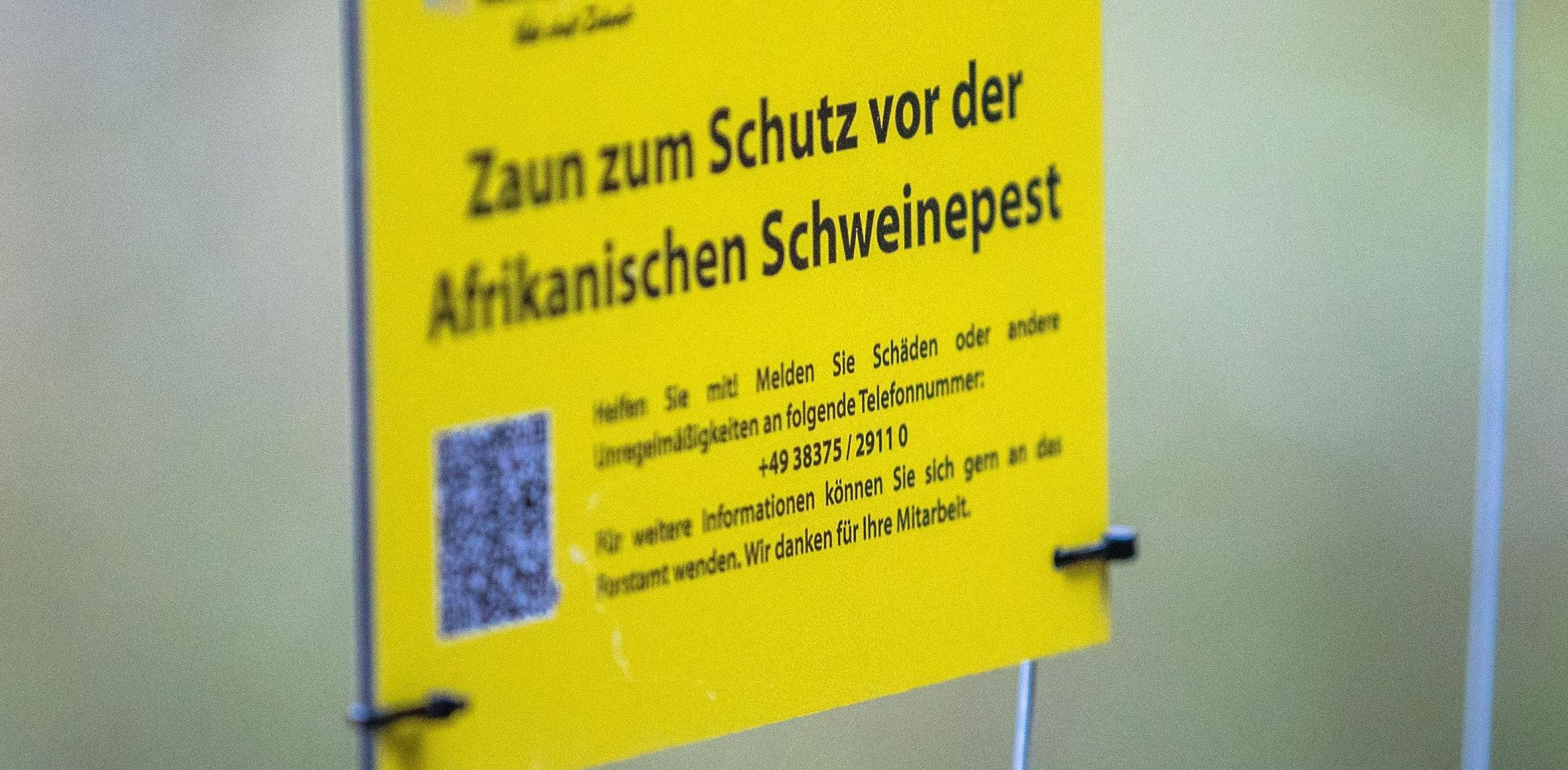 Prävention per Draht und elektrischer Ladung: Ein Sperrzaun an der Grenze zwischen Polen und Deutschland soll die Ausbreitung der Afrikanischen Schweinepest verhindern. Foto: dpa/Büttner