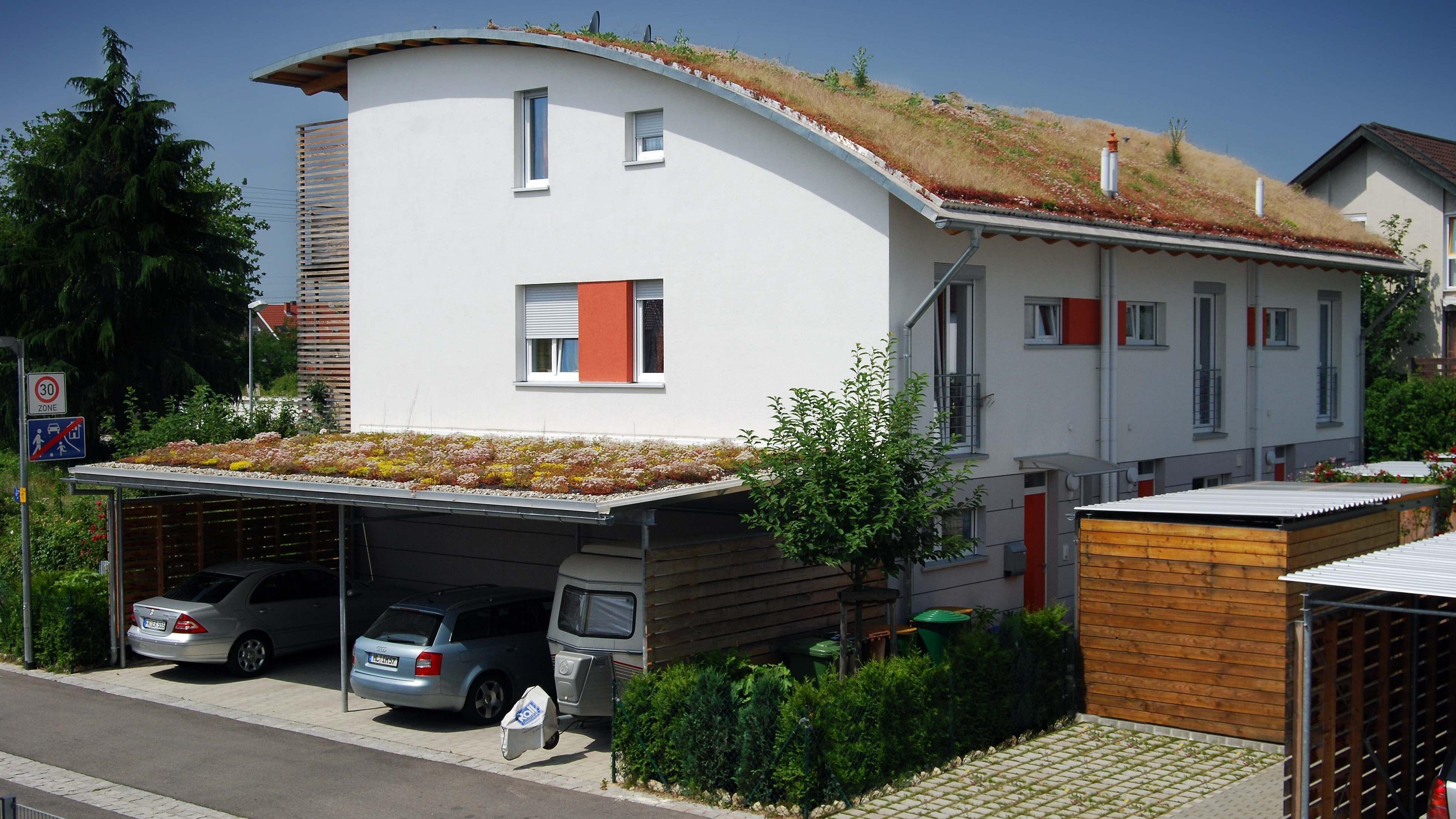 Grüne Welle fürs Klima: Die Stadt Lohne hat ein Förderprogramm für Gründächer und -fassaden sowie ein privates Regenwassermanagement aufgelegt. Foto: dpa/Optigrün