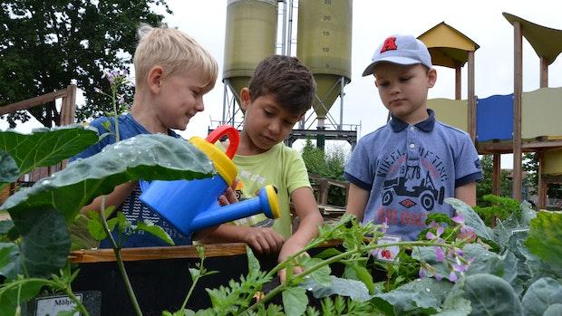 Kleine Gärtner pflegen Beete mit Hingabe