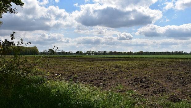 Bau des Windparks in Vestrup soll im Herbst beginnen